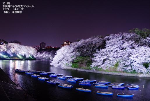 千鳥ヶ淵緑道の夜桜のライトアップ
