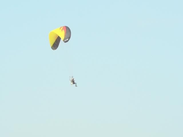 上空のパラグライダー